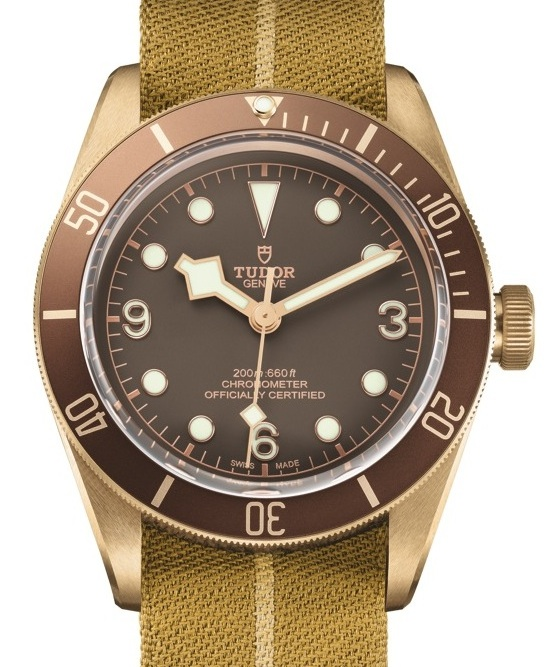 Front of Tudor Black Bay Bronze